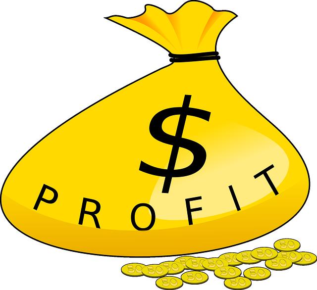 Profit bag image